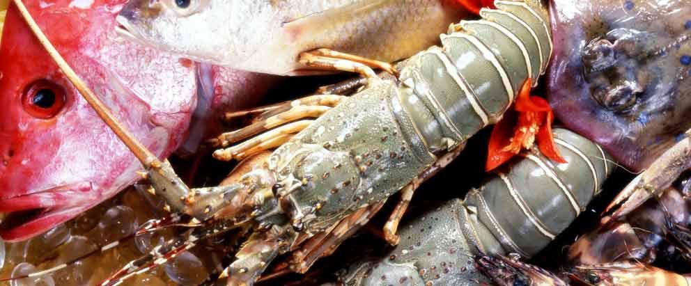 Fish and Seafood