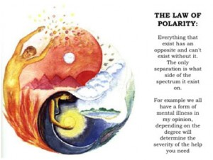 law-polarity-300x226